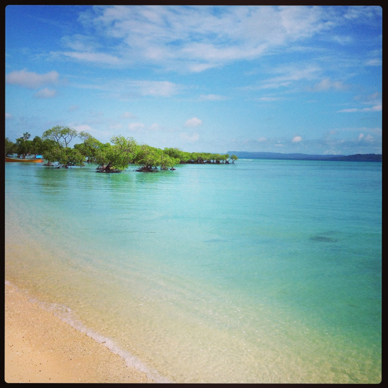 Bharatpur_beach_Neil_island_Andaman